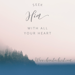 Seek Him With All Your Heart