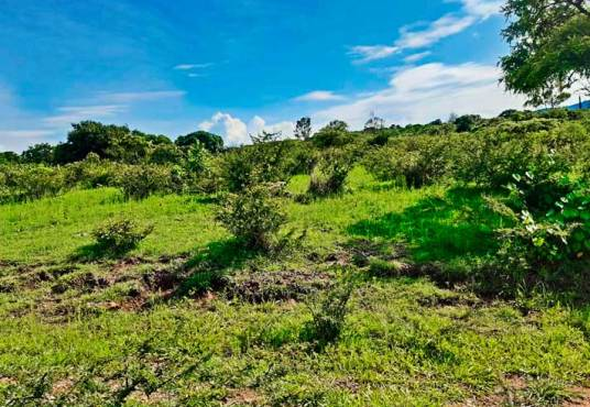 Lot for sale in Ixtlahuacan de los Membrillos