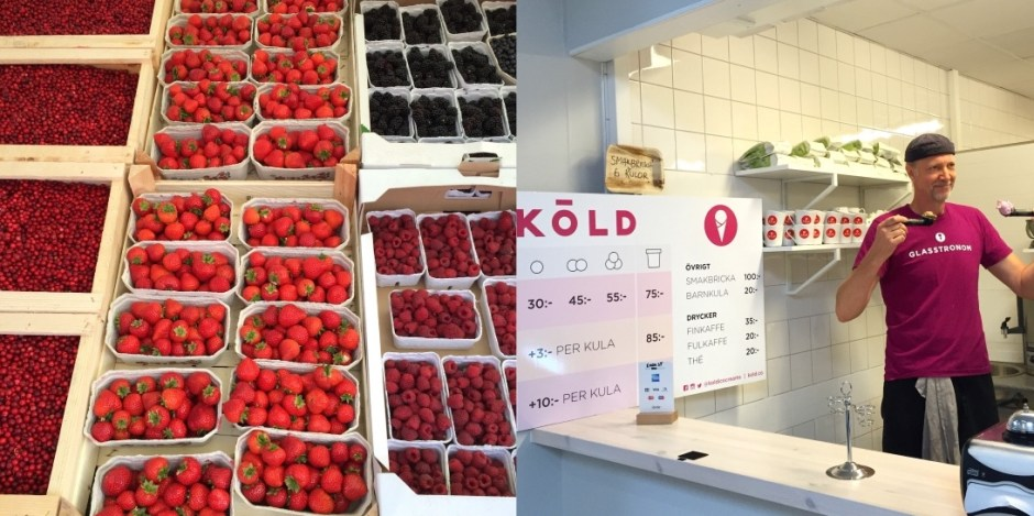 Malmo food tour Kold vegan ice