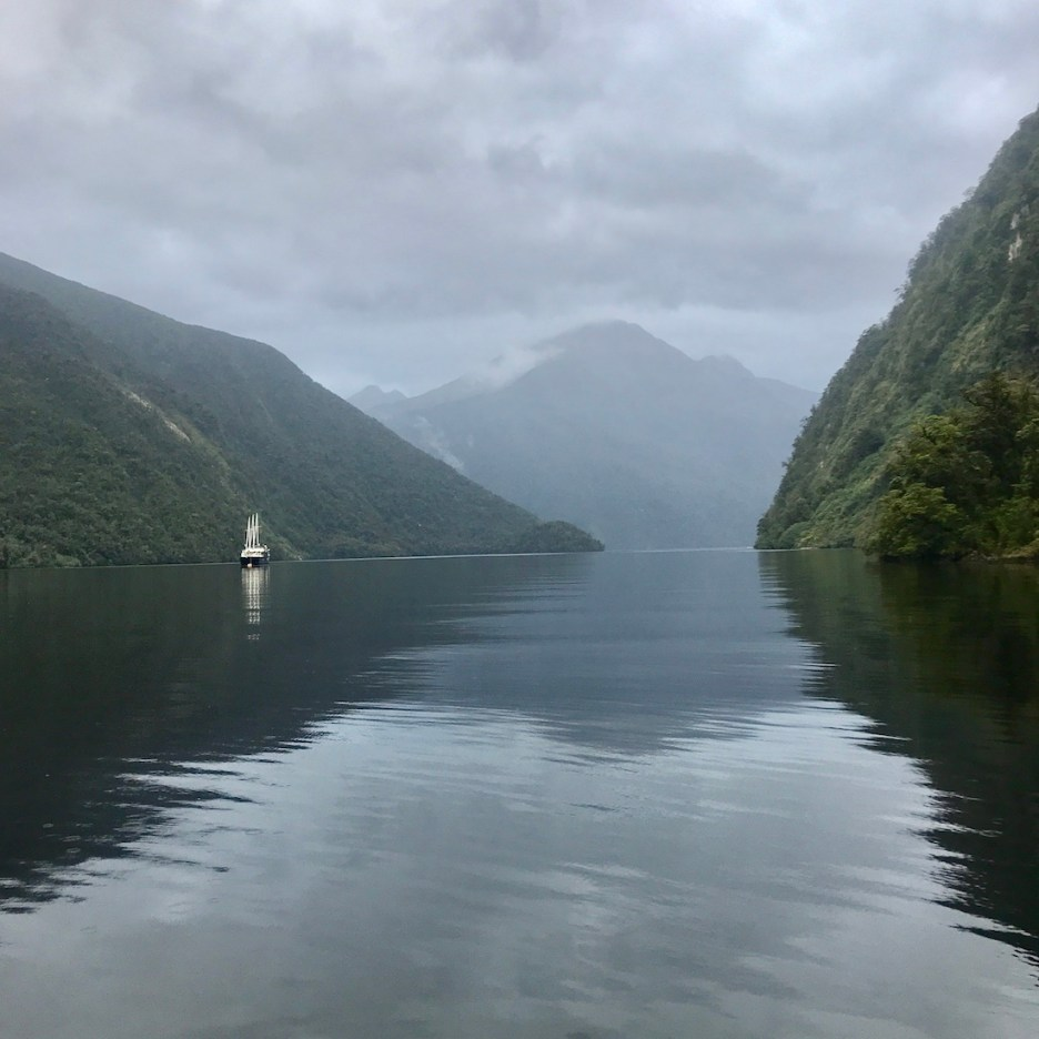 new zealand nature Fiordland National Park