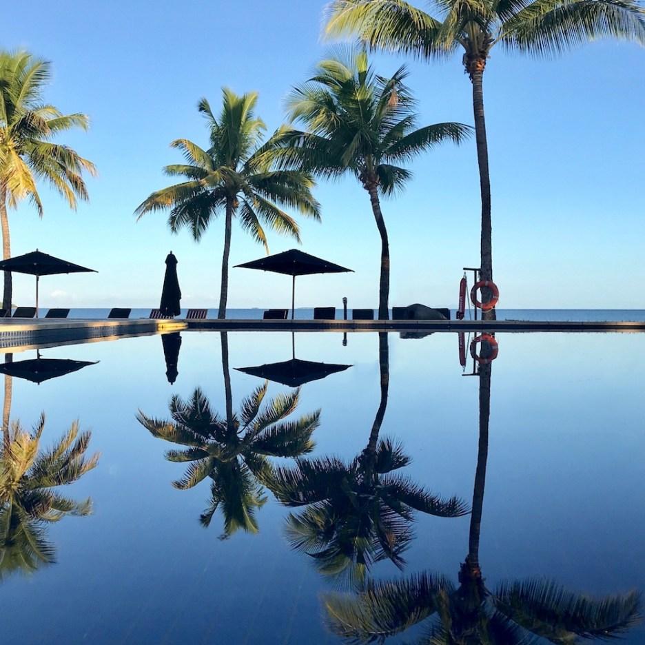fiji palm tree reflection