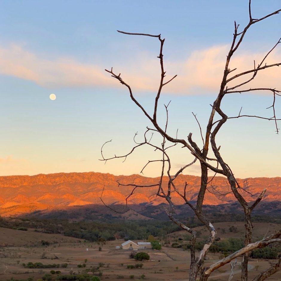 Arkaba Outback