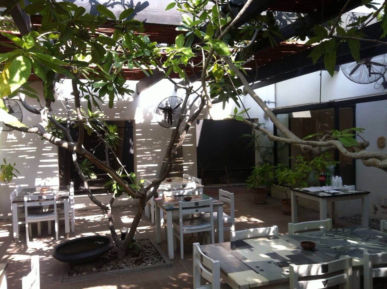 9 2 - Koel Cafe and Gallery: Food Elevated to Art