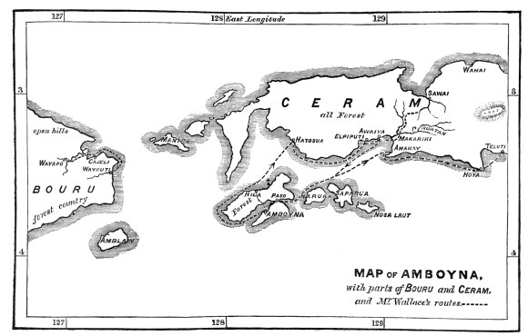 Map of Amboyna (Ambon) - Molucca Islands