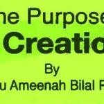 The Purpose of Creation