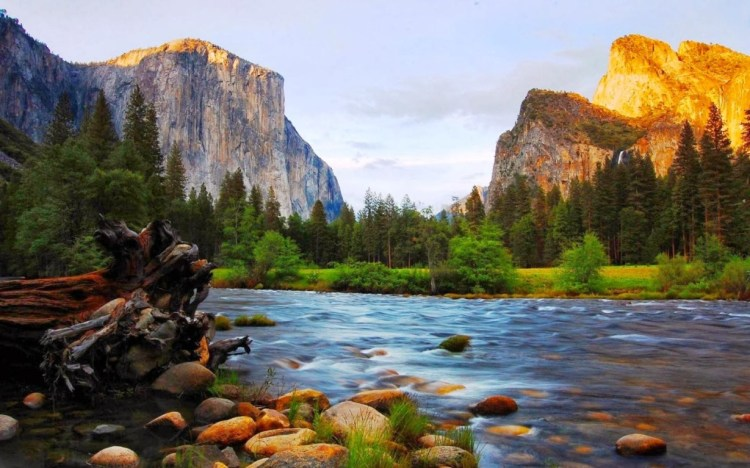 1920x1200_merced_river_el_capitan_and_bridalveil_yosemite_national_park_california-995018