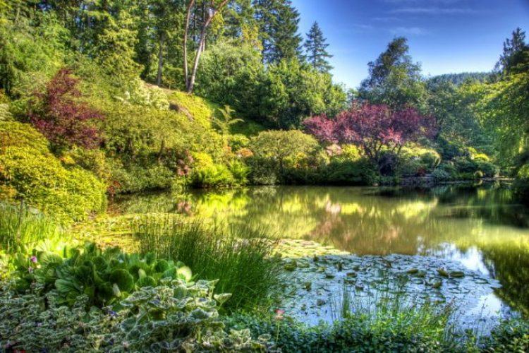 Butchart Garden Canada 18_resize
