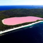 Hillier Lake or Pink Lake a Natural Phenomenon