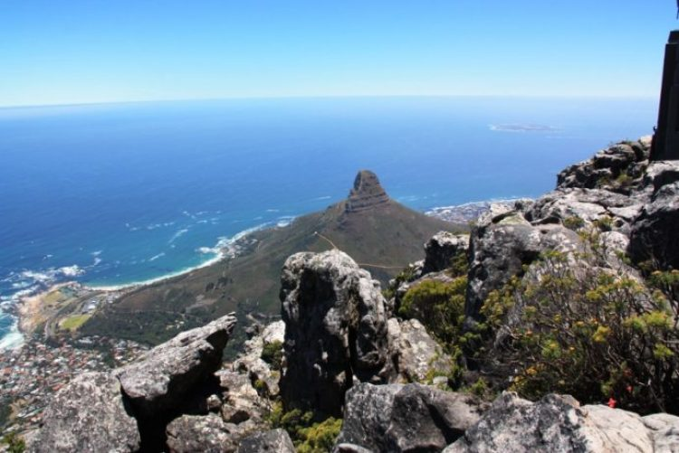 Lions Head South Africa 8