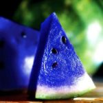 """The Asidus """"MOON MELON"""" is a Fruit We All Want"""