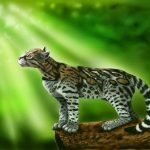 Leopardus Wild Cat Genus