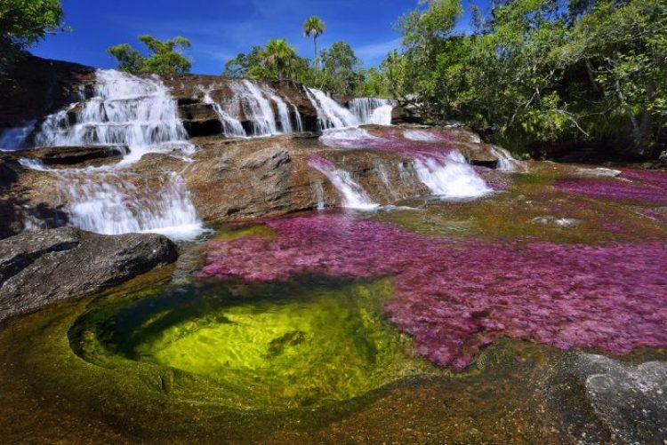Cano Cristales a small river30