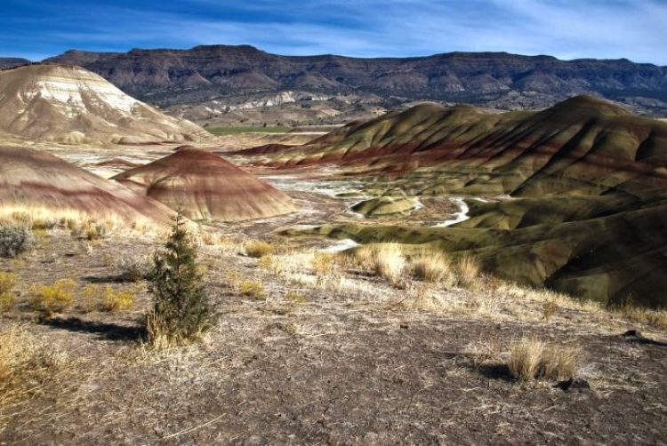 Painted Hills Oregon13
