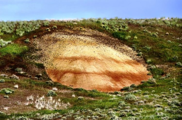 Painted Hills Oregon18