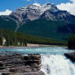 Athabasca Waterfall Canada