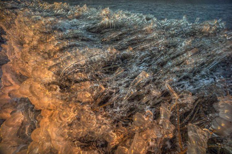 frozen-wave__880