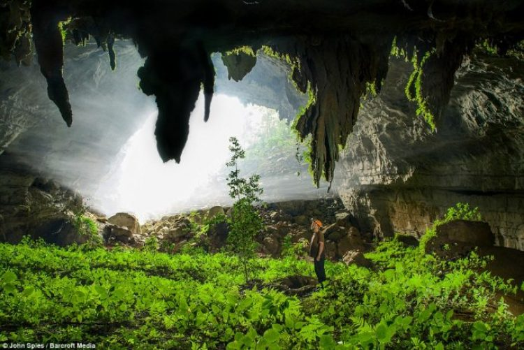 Sunlight streams into the mist-filled fossil passage near the sink of the Xe Bang Fai River. This section supports a verdant garden of ferns and other low light plants