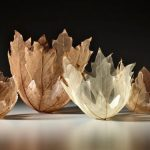 A Japanese Artist Made Ethereal Bowls from Skeletons of Maple
