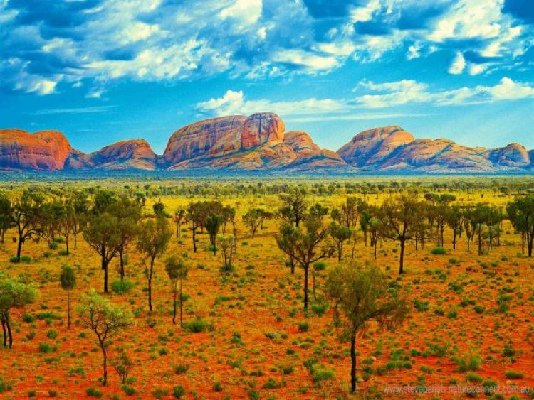 Kata-Tjuta, one of Australia's most spiritually and culturally significant landforms, lies 40 kilometres west of world-famous Uluru in the Northern Territory's Uluru-Kata Tjuta National Park.