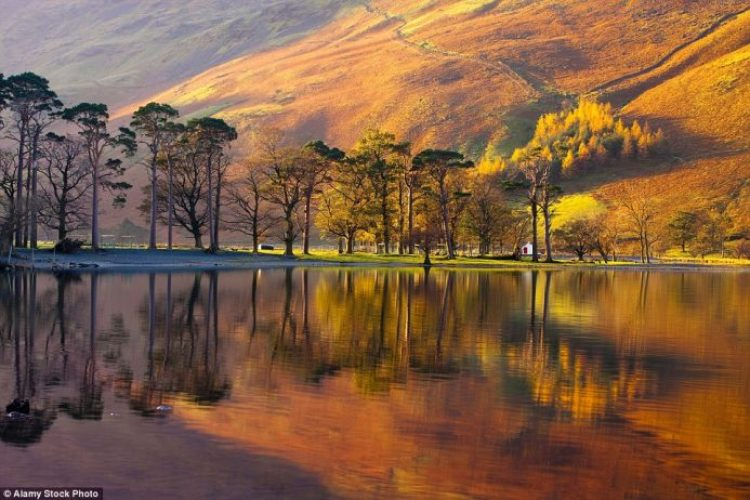 Take a walk by Lake Buttermere in Cumbria to see the dramatic foliage reflected in its waters