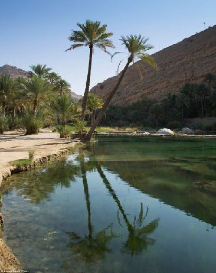 The Wadi Bani Khalid (above) is an oasis in the desert and is filled with huge amounts of water during the short cool weather period