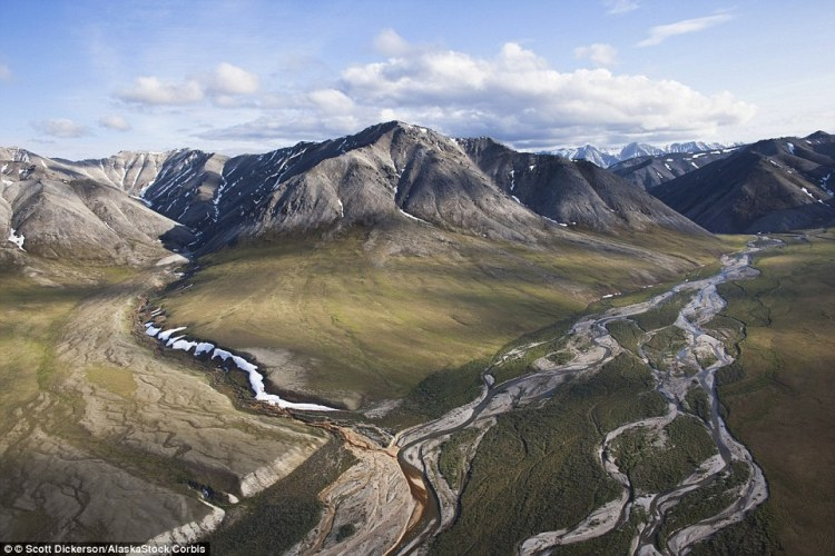 In the Arctic National Wildlife Refuge the Katakturuk River winds its way through the Sadlerochit Mountains