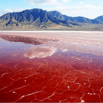 The Lake Natron Tanzania