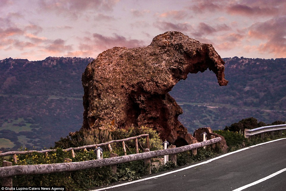 The Elephant Rock of Castelsardo