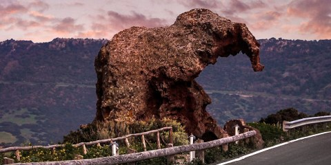 There is a rock in Italy that looks exactly like an elephant, complete with large head and dangling trunk