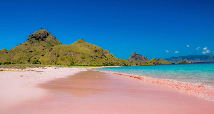 It might seem like a trick of the light but it's in fact caused by a micro-organism. Above, Pink Beach on Padar Island in Indonesia's Komodo Flores