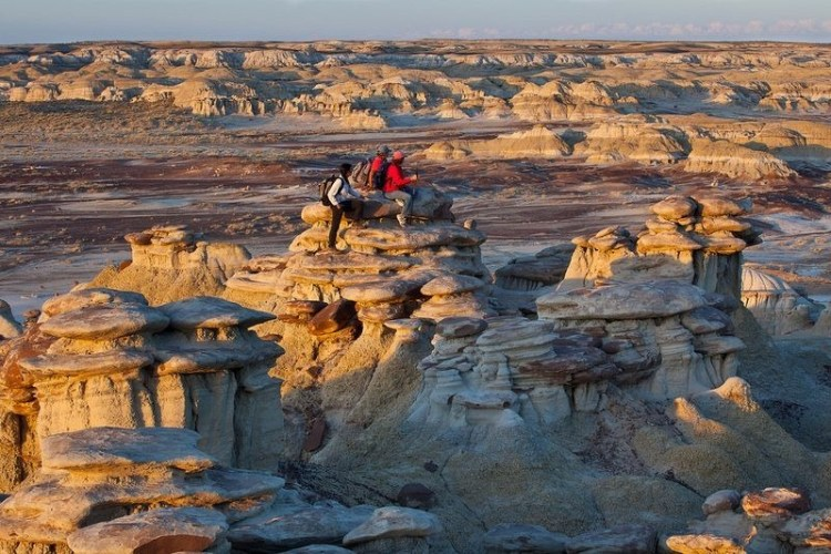 The badlands are administered by the BLM (Bureau of Land Management), are free to enter, and are known officially, but less evocatively as the Bisti Wilderness Area.