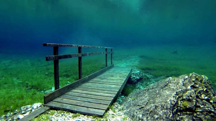 The green lake supports a variety of fauna such as snails, water fleas, small crabs, fly larvae, and different species of trout.