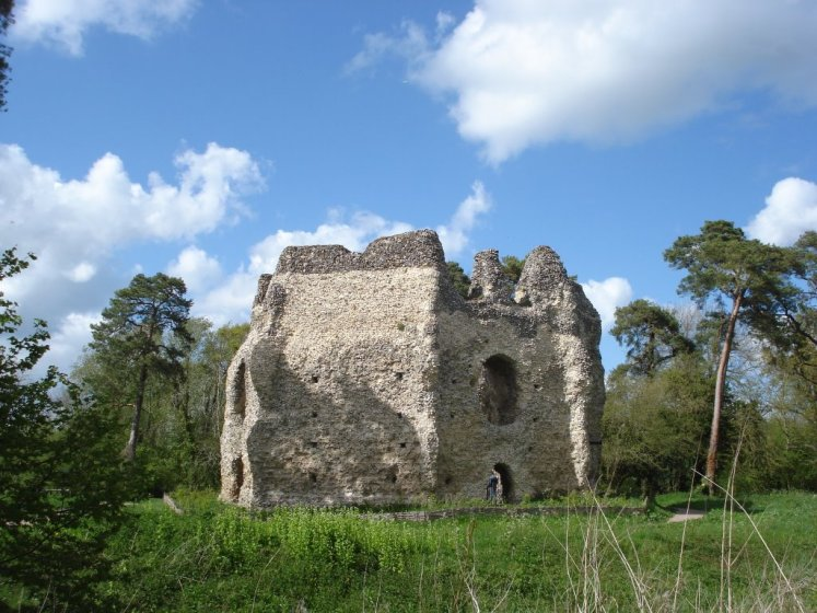The Odiham Castle is a ruined castle lies on the banks of the Basingstoke Canal, but was built long before the canal existed near Odiham in Hampshire United Kingdom.
