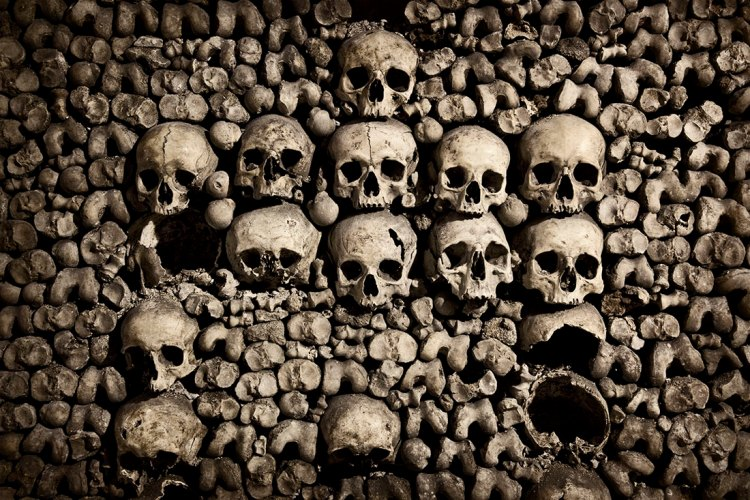 The popular place houses the skeletal remains of some six to seven million former Parisians, however not all areas of the Catacombs are open to the public.