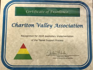 Tiered Support 2018 Award