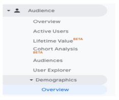 How to look up demographic analytics