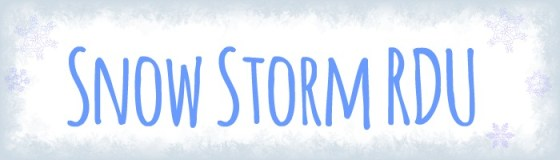 Snow Storm RDU