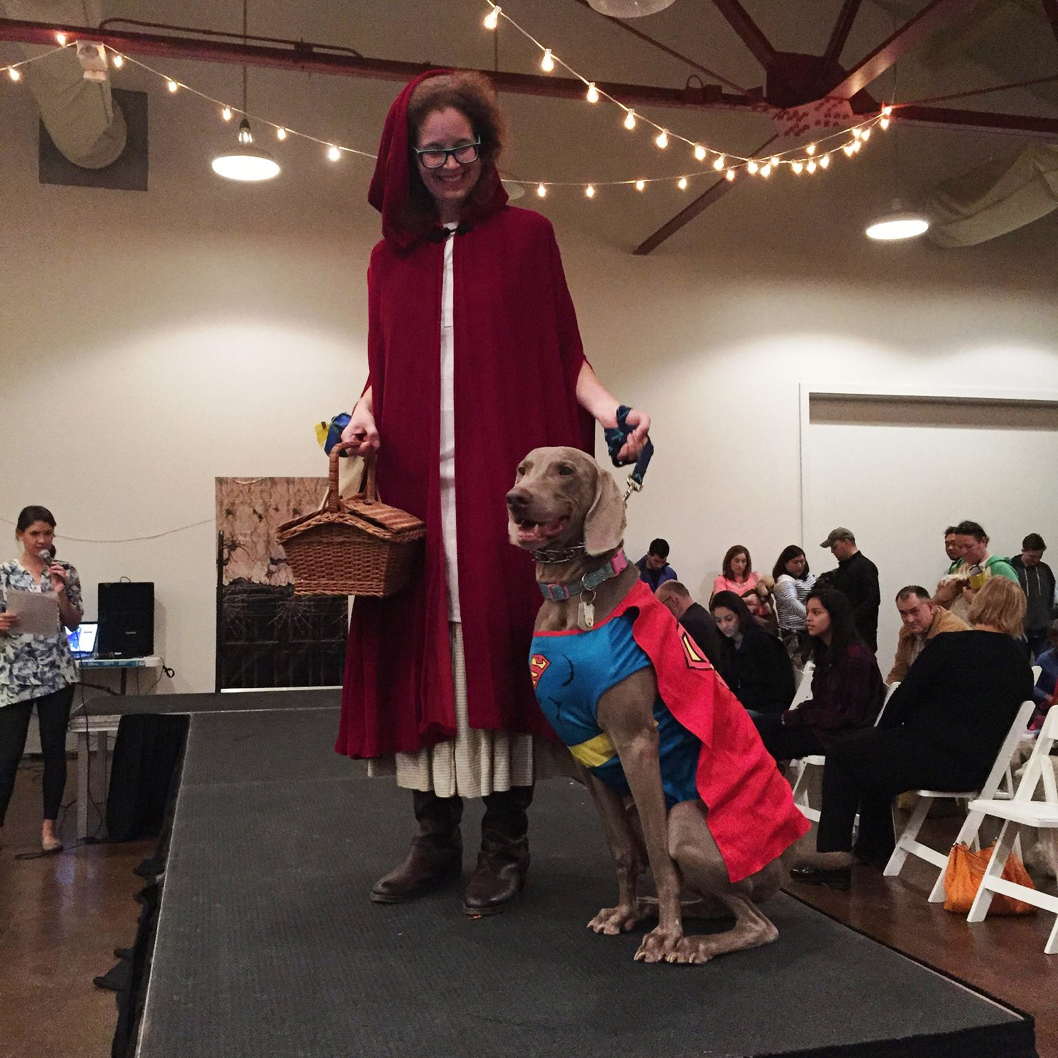 You are currently viewing Judging a Canine Costume Contest