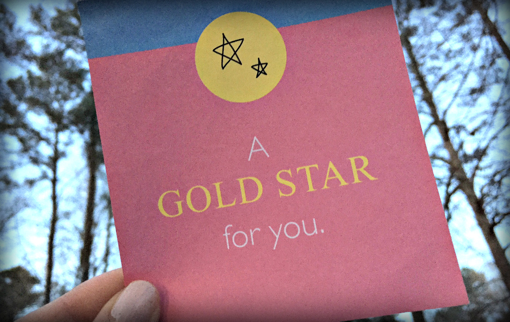 You are currently viewing Give Yourself a Gold Star