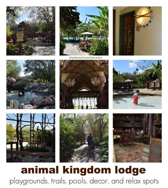 animal kingdom lodge photos