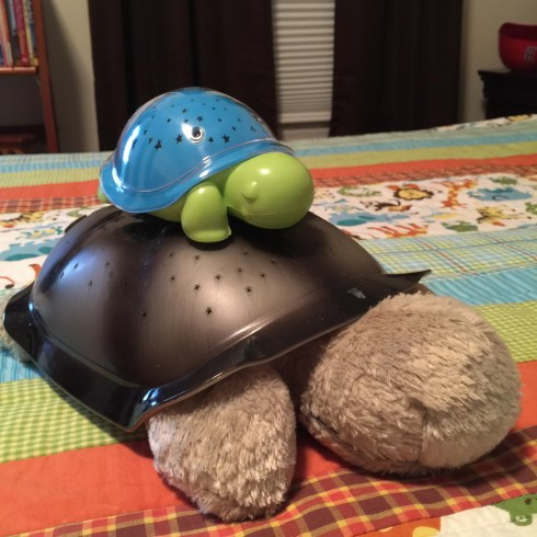 Max the turtle by cloud b
