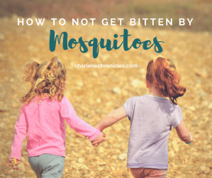 Tips on How to Not Getting Bitten by Mosquitoes by CharleneChronicles.com