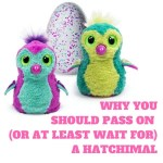 Why You Should Pass (or at least Wait) for a Hatchimal