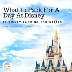 What to Pack for a Day at a Disney Park