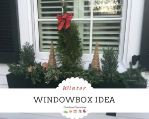 winter windowbox idea