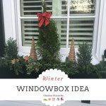 How to Make a Winter Window Box  – Idea on a Budget