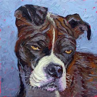 homelss shelter dogs pet portraits animals plein air studio oil paintings by Charlene Marsh oil painting