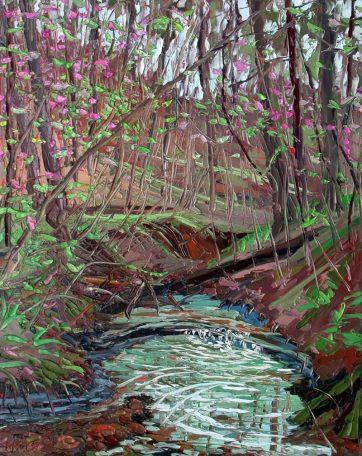 plein air studio oil paintings by Charlene MarshPlein air oil painting by Charlene Marsh