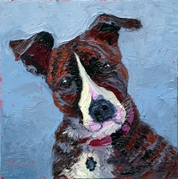 animals pet portraits plein air studio oil paintings by Charlene Marsh