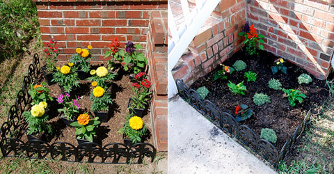 flower-plant-beds.jpg